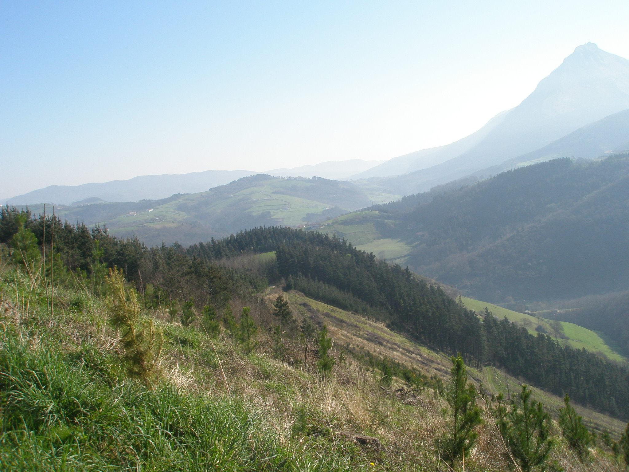 Amplia oferta formativa forestal en IES de Murgia
