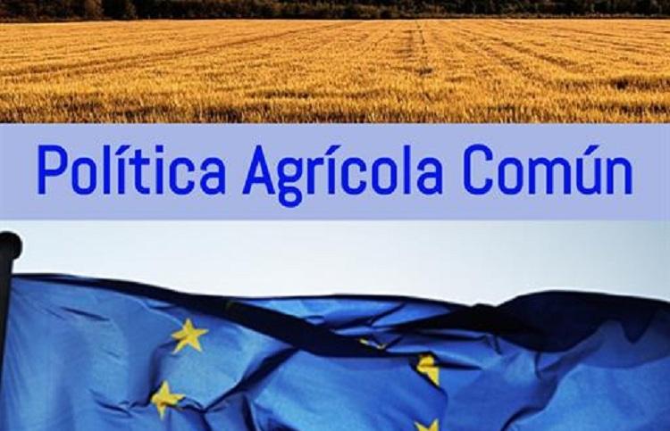 Tras el acuerdo de ayer, ENBA aboga, frente a la postura del Ministerio, por contar con un Plan Estratégico Vasco.