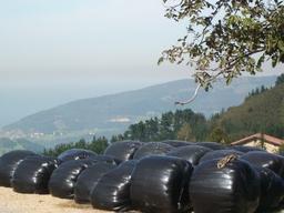Arranca la campaña de plástico para silo de la Cooperativa ENARO